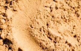 Песок карьерный с доставкой Московская область